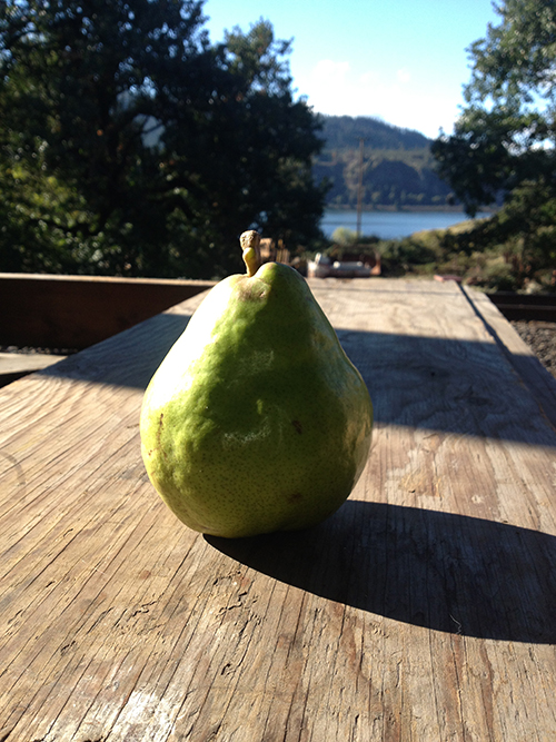 Pear on a board-sm